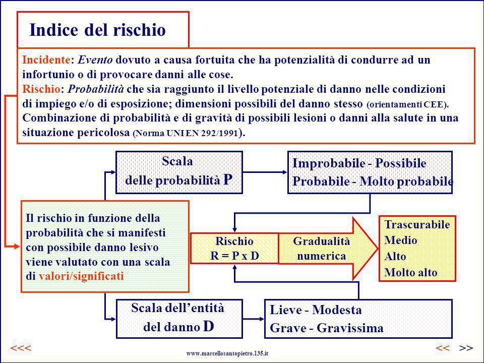 Il rischio in funzione della probabilità che si manifesti con possibile danno lesivo viene valutato con una scala di valori/significati Rischio R = P
