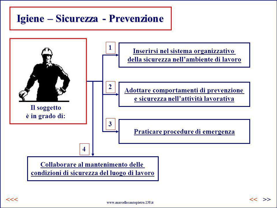 Igiene – Sicurezza - Prevenzione Il soggetto è in grado di: Inserirsi nel sistema organizzativo della sicurezza nellambiente di lavoro Adottare compor