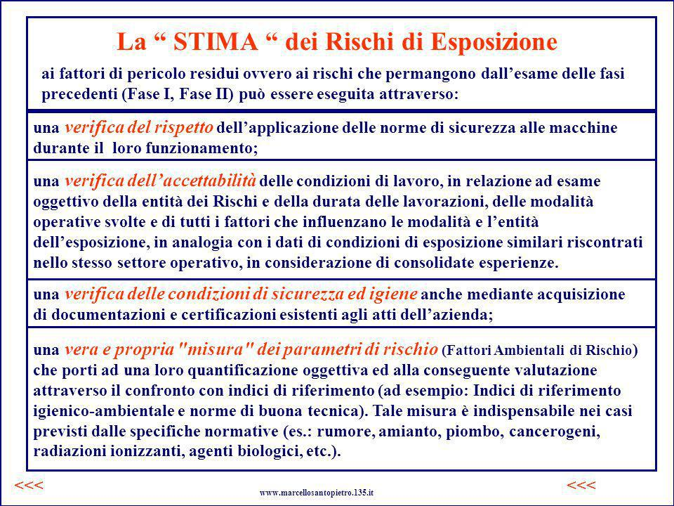 La STIMA dei Rischi di Esposizione ai fattori di pericolo residui ovvero ai rischi che permangono dallesame delle fasi precedenti (Fase I, Fase II) pu