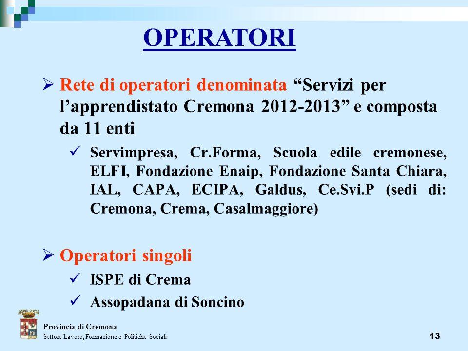 13 Rete di operatori denominata Servizi per lapprendistato Cremona 2012-2013 e composta da 11 enti Servimpresa, Cr.Forma, Scuola edile cremonese, ELFI
