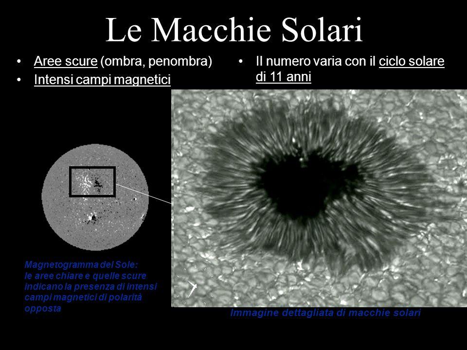 Le Macchie Solari Aree scure (ombra, penombra) Intensi campi magnetici Il numero varia con il ciclo solare di 11 anni Immagine dettagliata di macchie