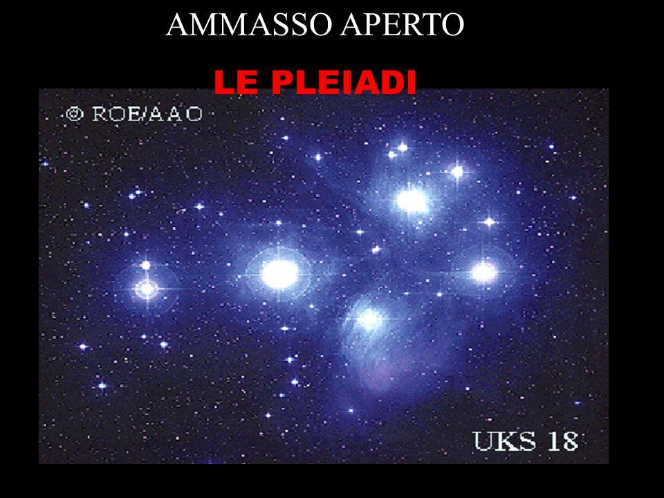 AMMASSO APERTO LE PLEIADI