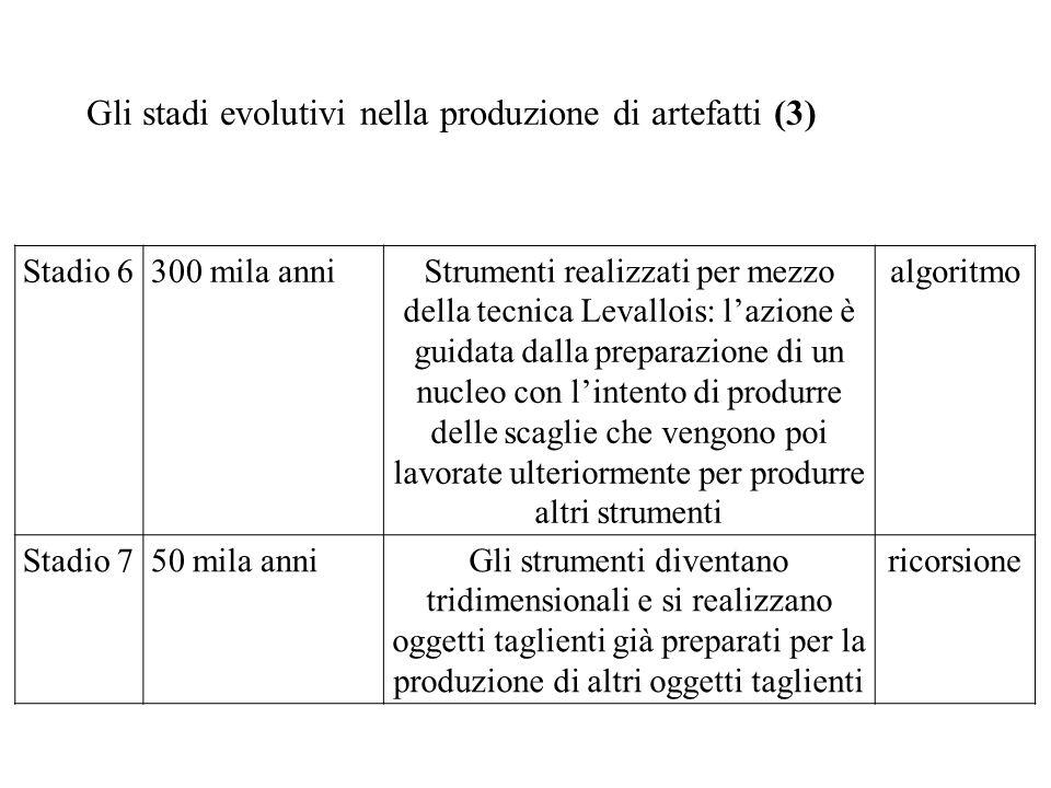 Gli stadi evolutivi nella produzione di artefatti (3) Stadio 6300 mila anniStrumenti realizzati per mezzo della tecnica Levallois: lazione è guidata d