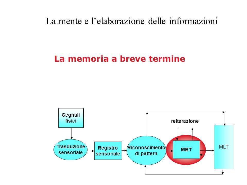 La mente e lelaborazione delle informazioni Registro sensoriale Riconoscimento di pattern MBT MLT Segnali fisici Trasduzione sensoriale reiterazione L