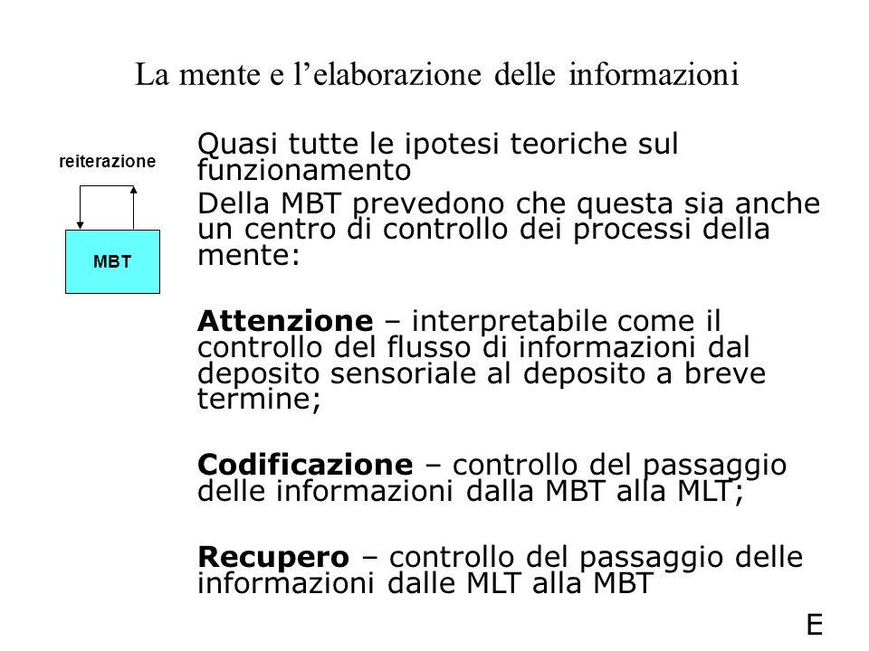 La mente e lelaborazione delle informazioni Quasi tutte le ipotesi teoriche sul funzionamento Della MBT prevedono che questa sia anche un centro di co