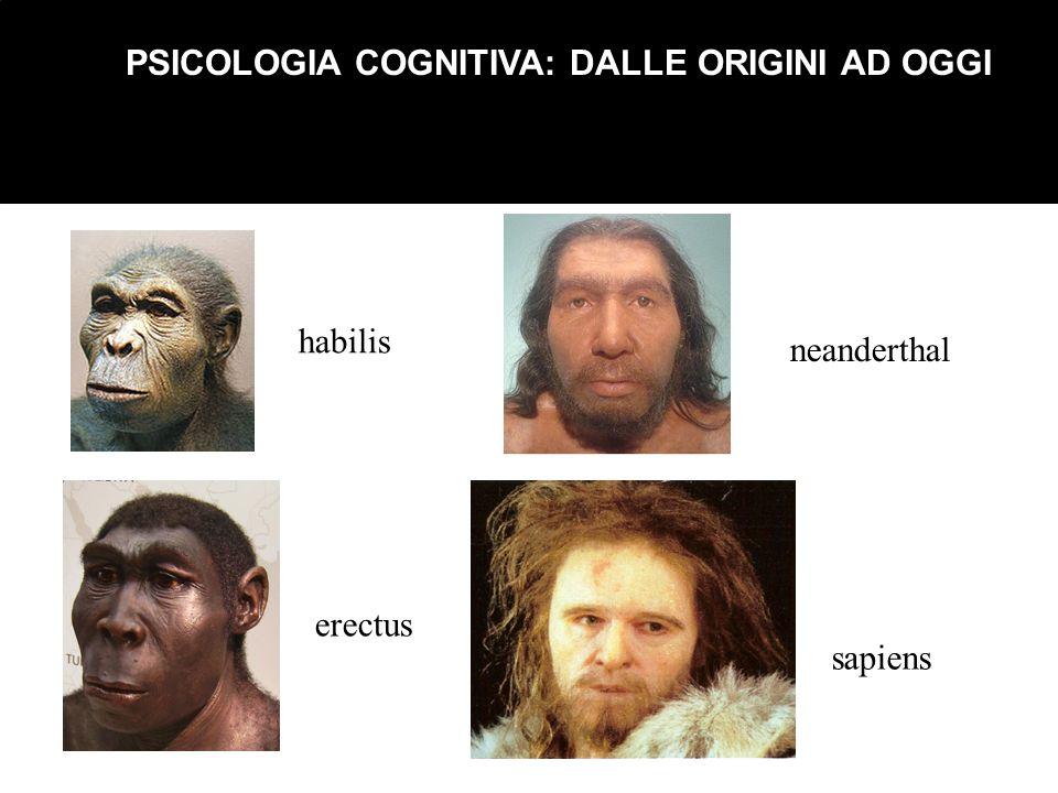 PSICOLOGIA COGNITIVA: DALLE ORIGINI AD OGGI habilis erectus neanderthal sapiens