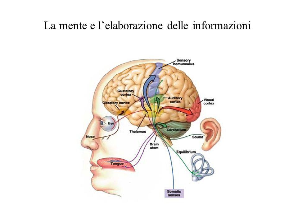 La mente e lelaborazione delle informazioni