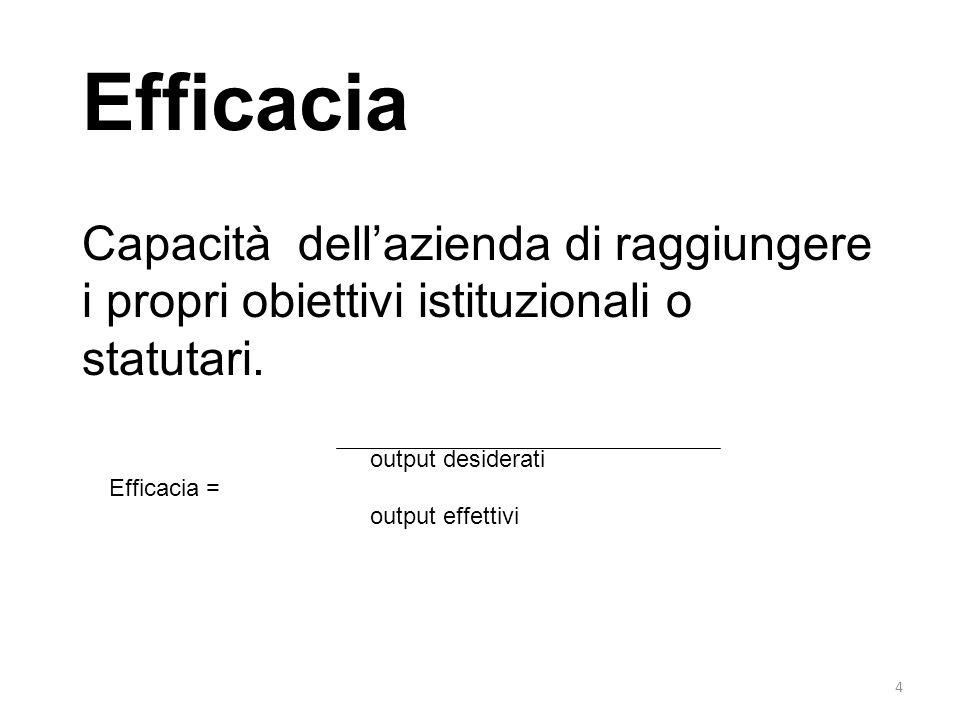 4 Efficacia Capacità dellazienda di raggiungere i propri obiettivi istituzionali o statutari. output desiderati Efficacia = output effettivi