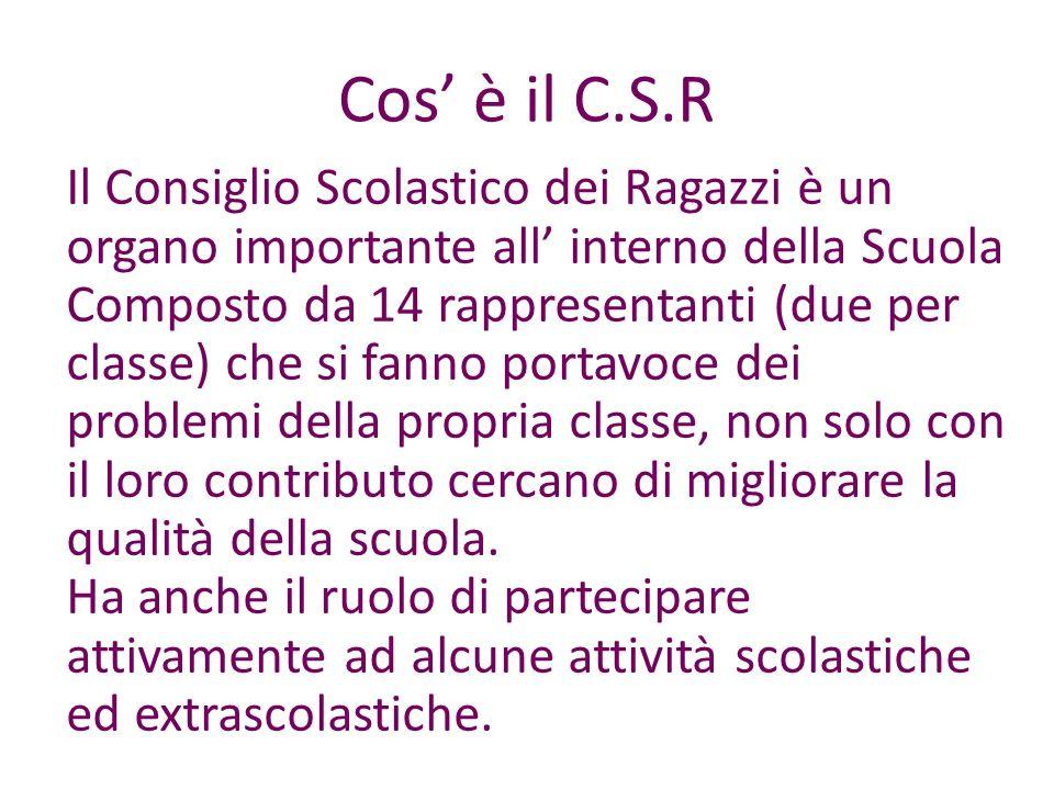 Cos è il C.S.R Il Consiglio Scolastico dei Ragazzi è un organo importante all interno della Scuola Composto da 14 rappresentanti (due per classe) che