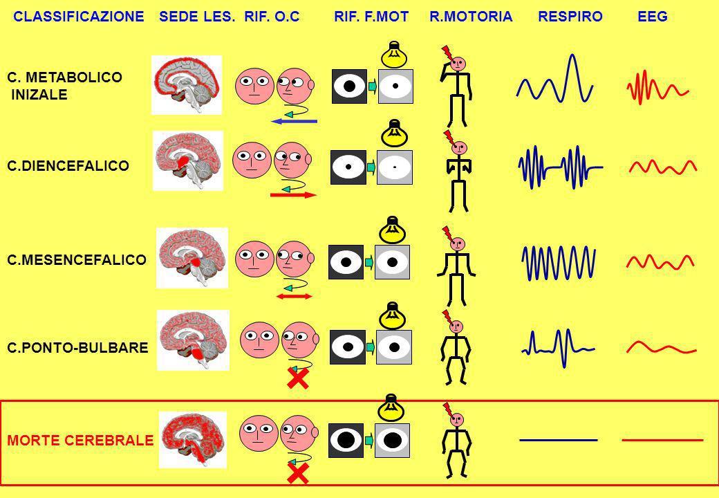 CLASSIFICAZIONE SEDE LES.RIF. O.C RIF. F.MOT R.MOTORIA RESPIRO EEG C.