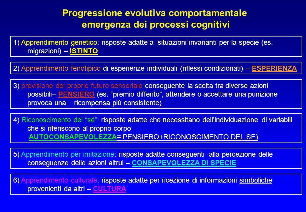 1) Apprendimento genetico: risposte adatte a situazioni invarianti per la specie (es. migrazioni) – ISTINTO Progressione evolutiva comportamentale eme