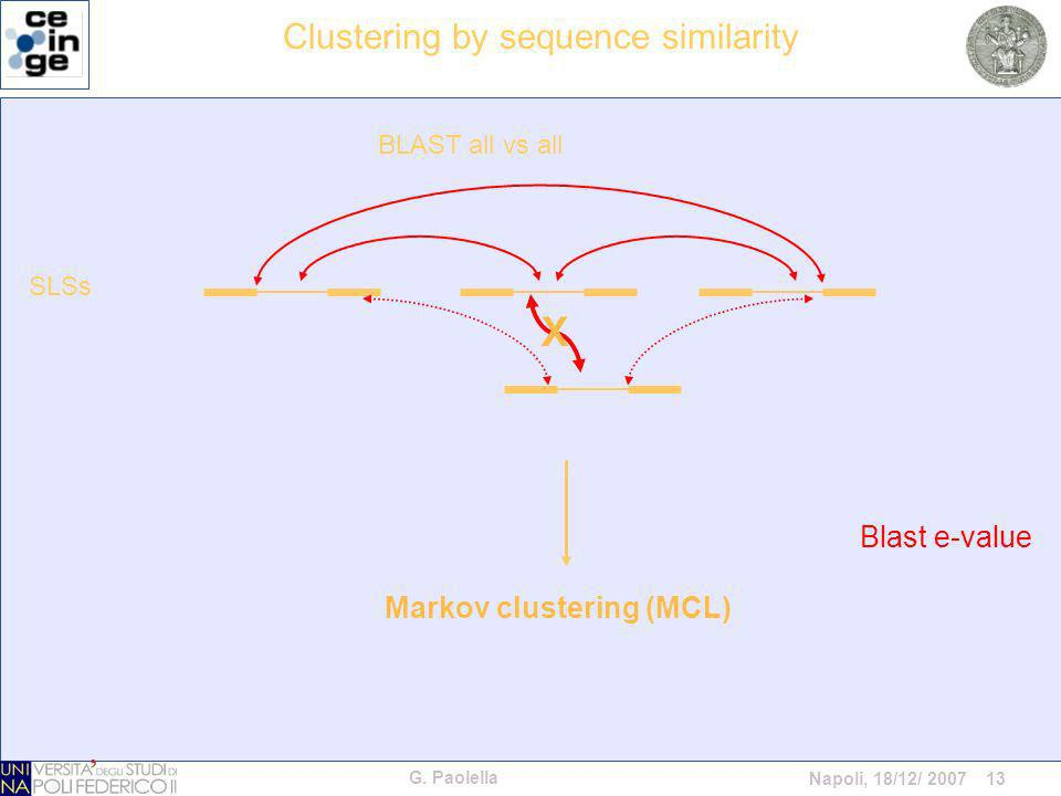 G. Paolella Napoli, 18/12/ 2007 13 Blast e-value Markov clustering (MCL) X SLSs BLAST all vs all Clustering by sequence similarity