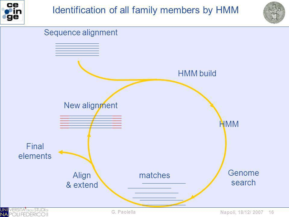 G. Paolella Napoli, 18/12/ 2007 16 Genome search Identification of all family members by HMM Sequence alignment matches HMM New alignment Final elemen