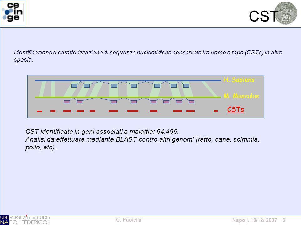 G. Paolella Napoli, 18/12/ 2007 3 CST Identificazione e caratterizzazione di sequenze nucleotidiche conservate tra uomo e topo (CSTs) in altre specie.