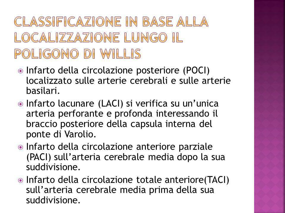 Infarto della circolazione posteriore (POCI) localizzato sulle arterie cerebrali e sulle arterie basilari. Infarto lacunare (LACI) si verifica su unun