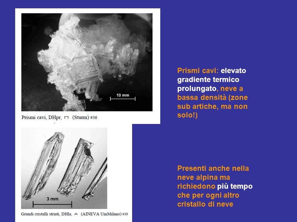 Prismi cavi: elevato gradiente termico prolungato, neve a bassa densità (zone sub artiche, ma non solo!) Presenti anche nella neve alpina ma richiedono più tempo che per ogni altro cristallo di neve