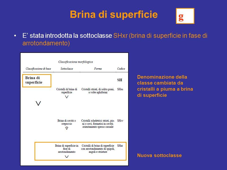 Brina di superficie E stata introdotta la sottoclasse SHxr (brina di superficie in fase di arrotondamento) Nuova sottoclasse Denominazione della classe cambiata da cristalli a piuma a brina di superficie g