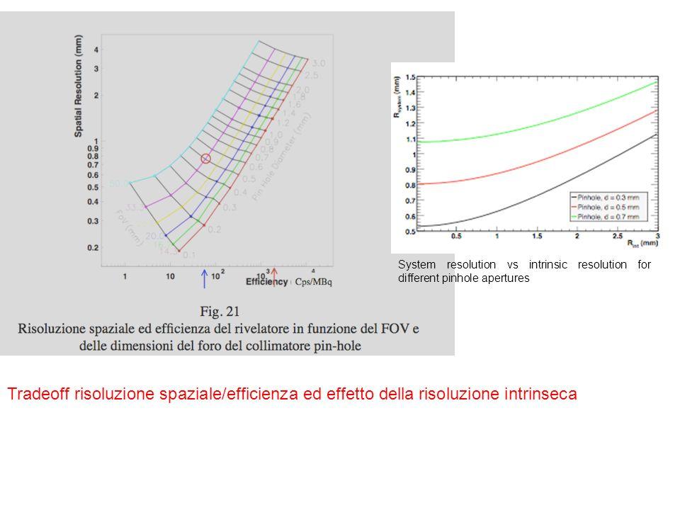 Single pinhole (0.5 mm) 110.03 8 detectors880.022 System response correction 2.1517.210.047 6 pinhole/detec tor iamging geometry 6103.250.279 12-pinhole geometry (optimistic) 2206.510.558 Efficienza possibile con aumento del numero di rivelatori e tenica di multipinhole Non esiste sul mercato un rivelatore di tali caratteritiche (FOV = ~ 33 x 33 mm2, risoluzione spaziale (~ 0.8 mm 0.3 mm) (tradeoff con efficienza).