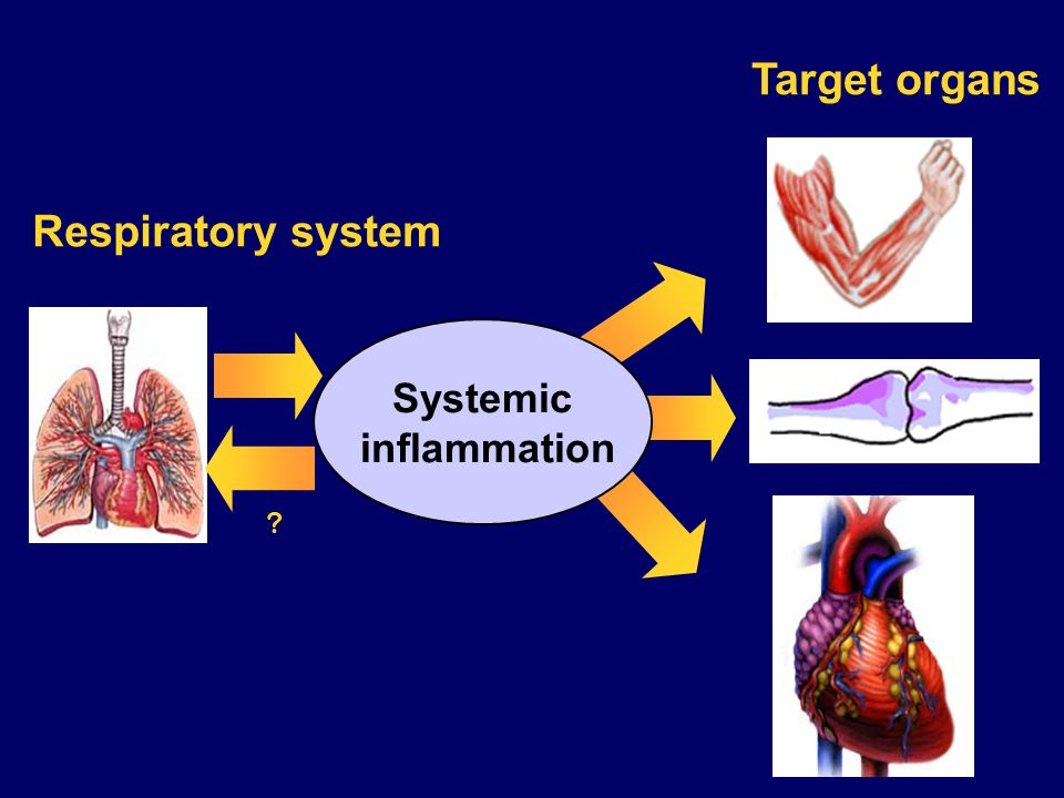 Respiratory system Target organs Systemic inflammation ?
