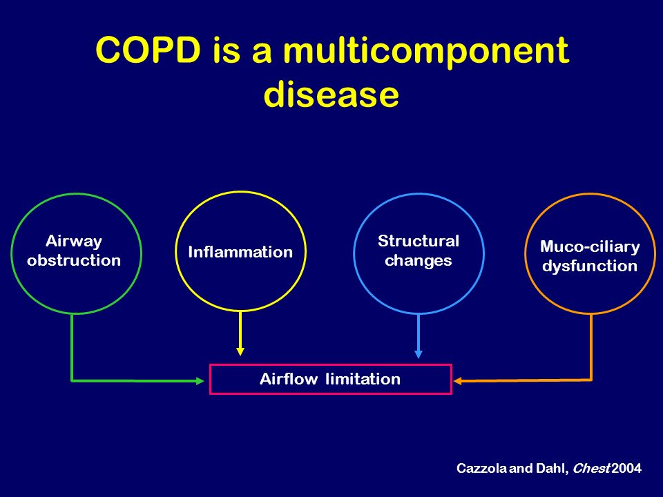 Alveolar wall destruction Loss of elasticity Destruction of pulmonary capillary bed Inflammatory cells macrophages, CD8 + lymphocytes Source: Peter J.