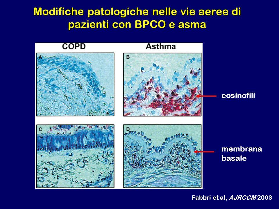 Modifiche patologiche nelle vie aeree di pazienti con BPCO e asma eosinofili membrana basale Fabbri et al, AJRCCM 2003