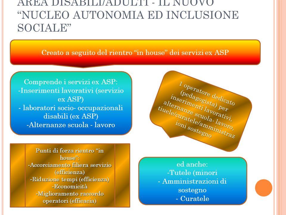 A REA D ISABILI /A DULTI - NUCLEO AUTONOMIA ED INCLUSIONE SOCIALE – INSERIMENTI LAVORATIVI -n.