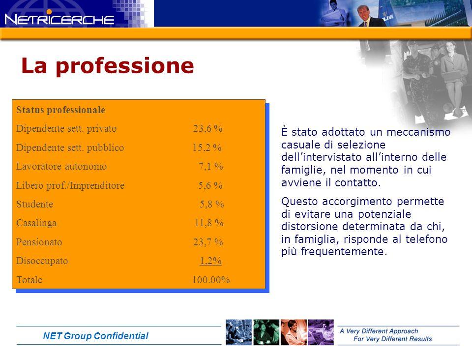 NET Group Confidential La professione Status professionale Dipendente sett.