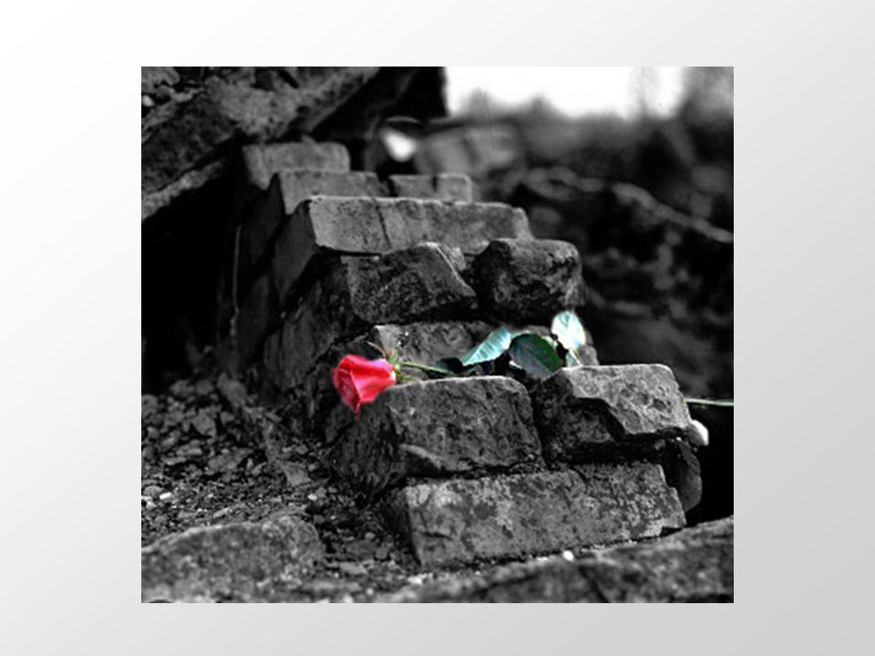 Lo sterminio di un popolo Giornata della memoria 27 gennaio 2007