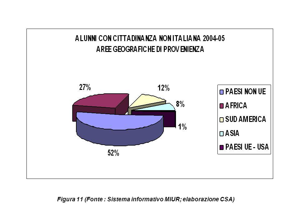 Figura 11 (Fonte : Sistema informativo MIUR; elaborazione CSA)