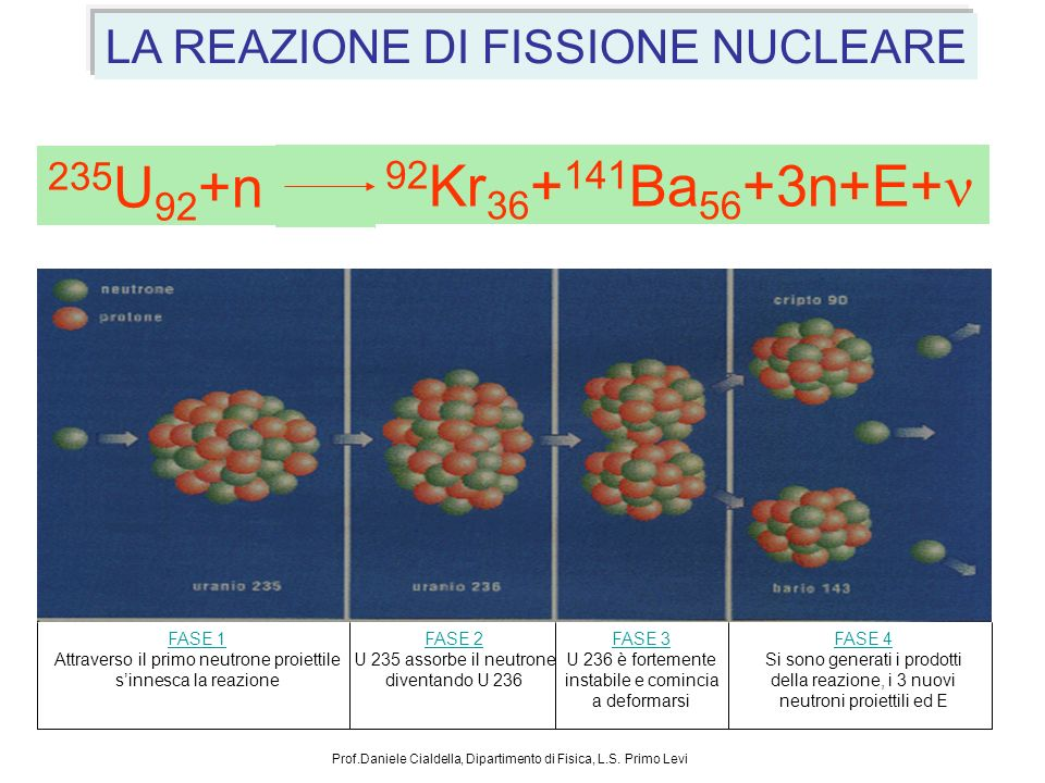 LA REAZIONE DI FISSIONE NUCLEARE FASE 1 Attraverso il primo neutrone proiettile sinnesca la reazione FASE 3 U 236 è fortemente instabile e comincia a deformarsi FASE 4 Si sono generati i prodotti della reazione, i 3 nuovi neutroni proiettili ed E FASE 2 U 235 assorbe il neutrone diventando U 236 92 Kr 36 + 141 Ba 56 +3n+E+ 235 U 92 +n Prof.Daniele Cialdella, Dipartimento di Fisica, L.S.
