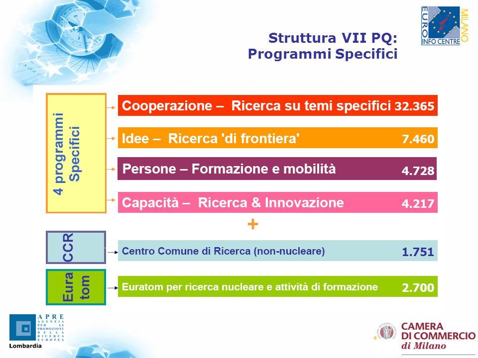 2 Struttura VII PQ: Programmi Specifici