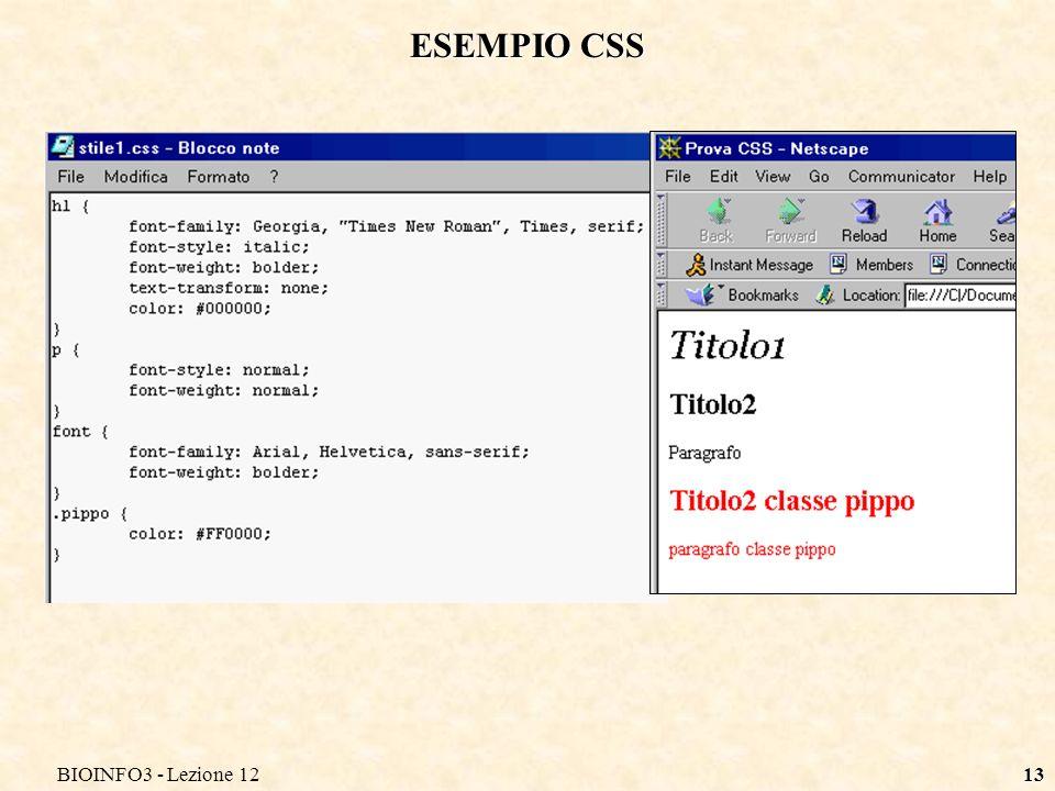 BIOINFO3 - Lezione 1213 ESEMPIO CSS