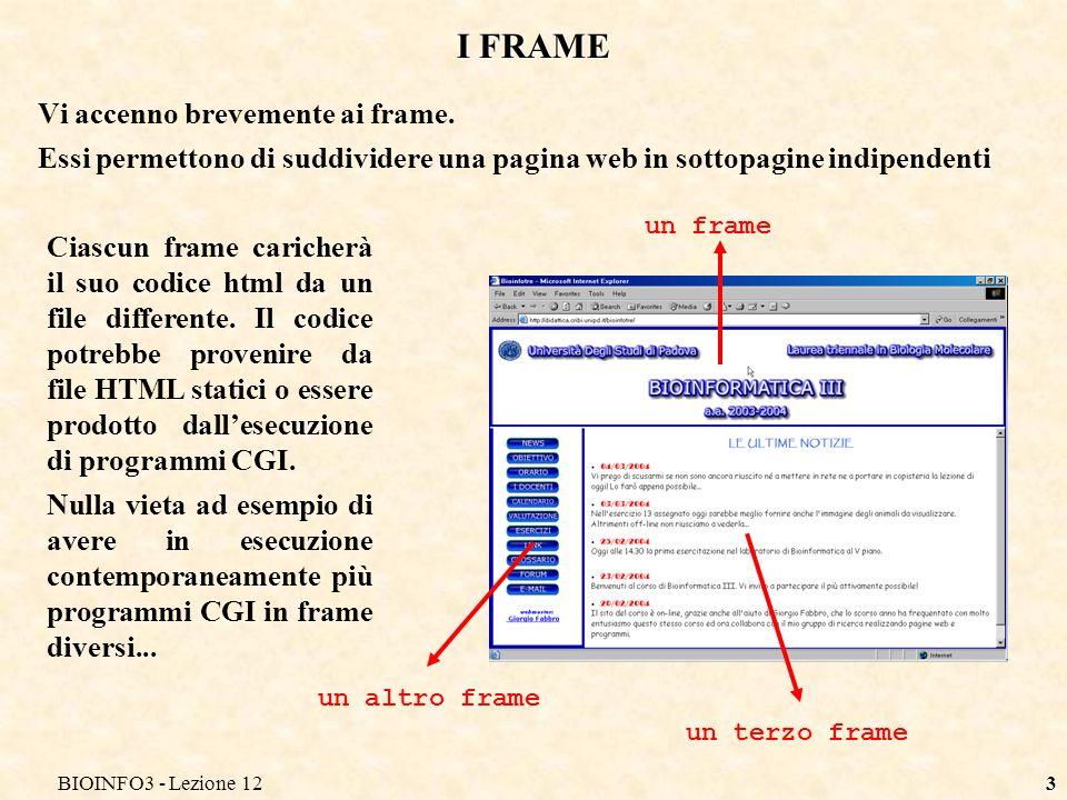 BIOINFO3 - Lezione 123 I FRAME Vi accenno brevemente ai frame.