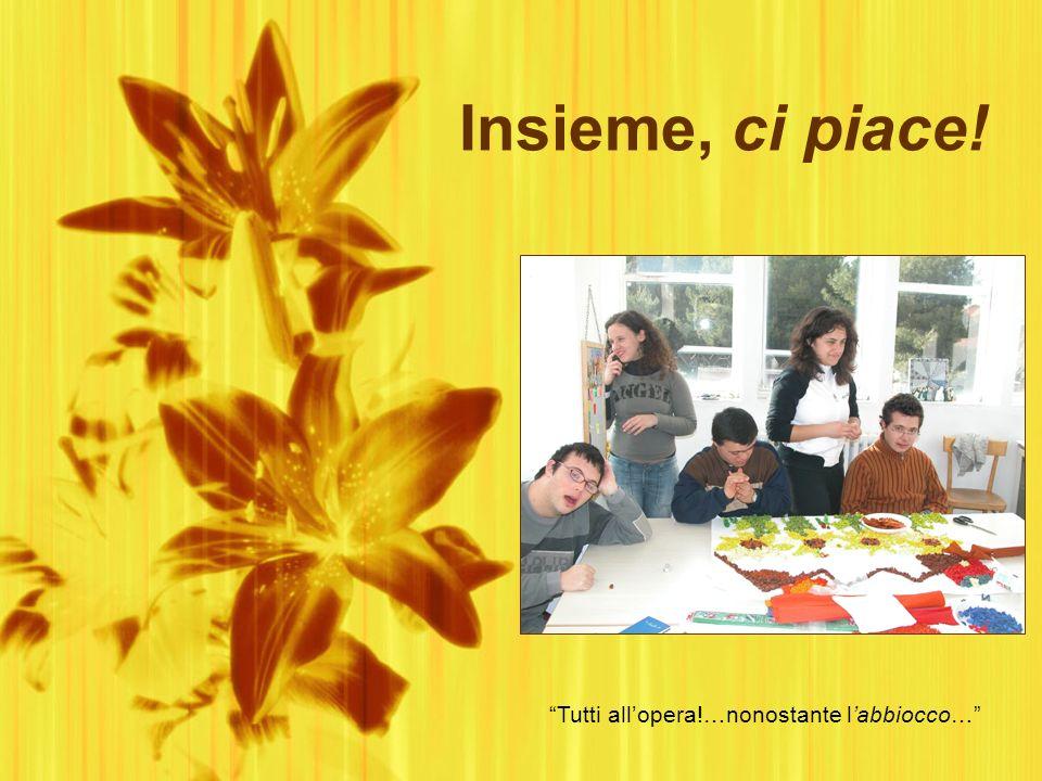 Insieme, ci piace! Viaggio nellAssociazione Italiana Persone Down di Matera A scuola di solidarietà: lo sportello scuola volontariato _ Progetto CsvBa