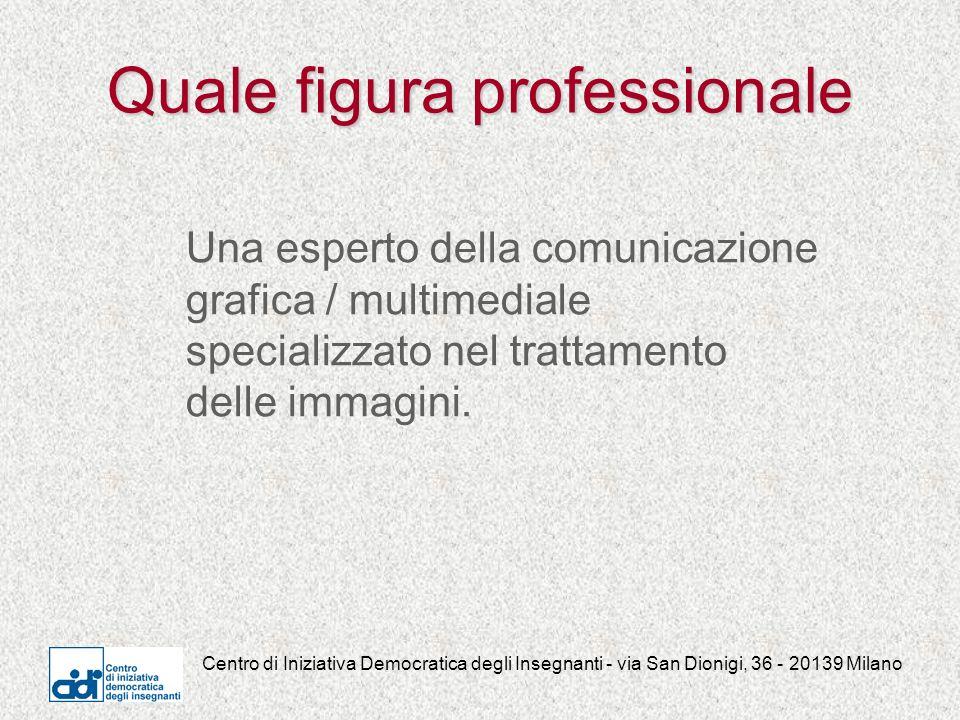 Centro di Iniziativa Democratica degli Insegnanti - via San Dionigi, 36 - 20139 Milano Quale figura professionale Una esperto della comunicazione grafica / multimediale specializzato nel trattamento delle immagini.