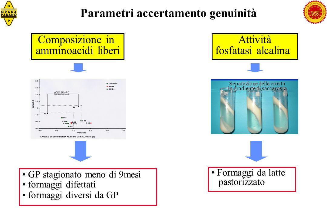 Elettroforesi capillare: rapporto tra peptidi specifici tipologia grattugiato fresco: quantità di crosta superiore al 18% Parametri accertamento genuinità 7 Stagionatura inferiore al dichiarato