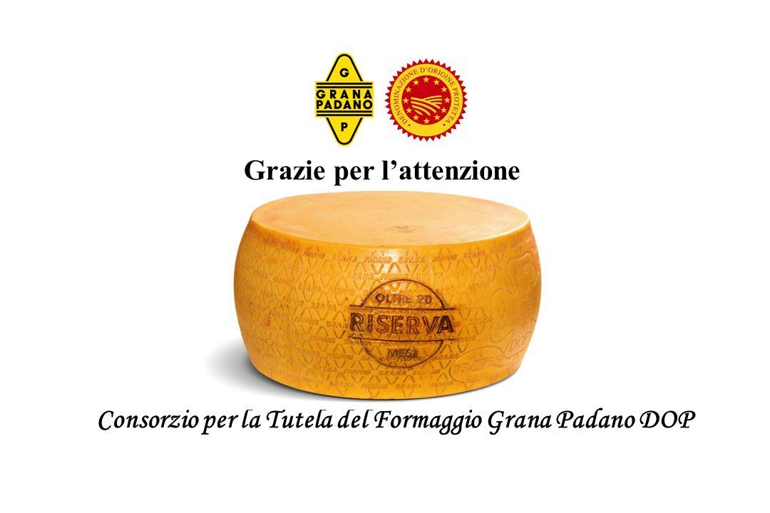 Grazie per lattenzione Consorzio per la Tutela del Formaggio Grana Padano DOP Grazie per lattenzione