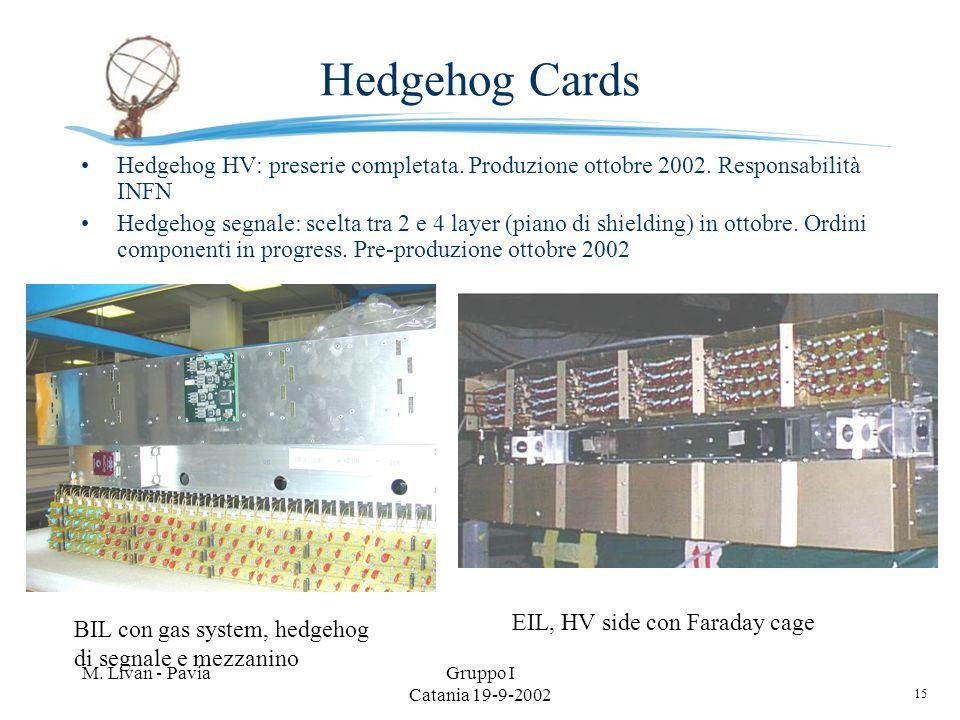 15 M. Livan - PaviaGruppo I Catania 19-9-2002 Hedgehog Cards Hedgehog HV: preserie completata. Produzione ottobre 2002. Responsabilità INFN Hedgehog s