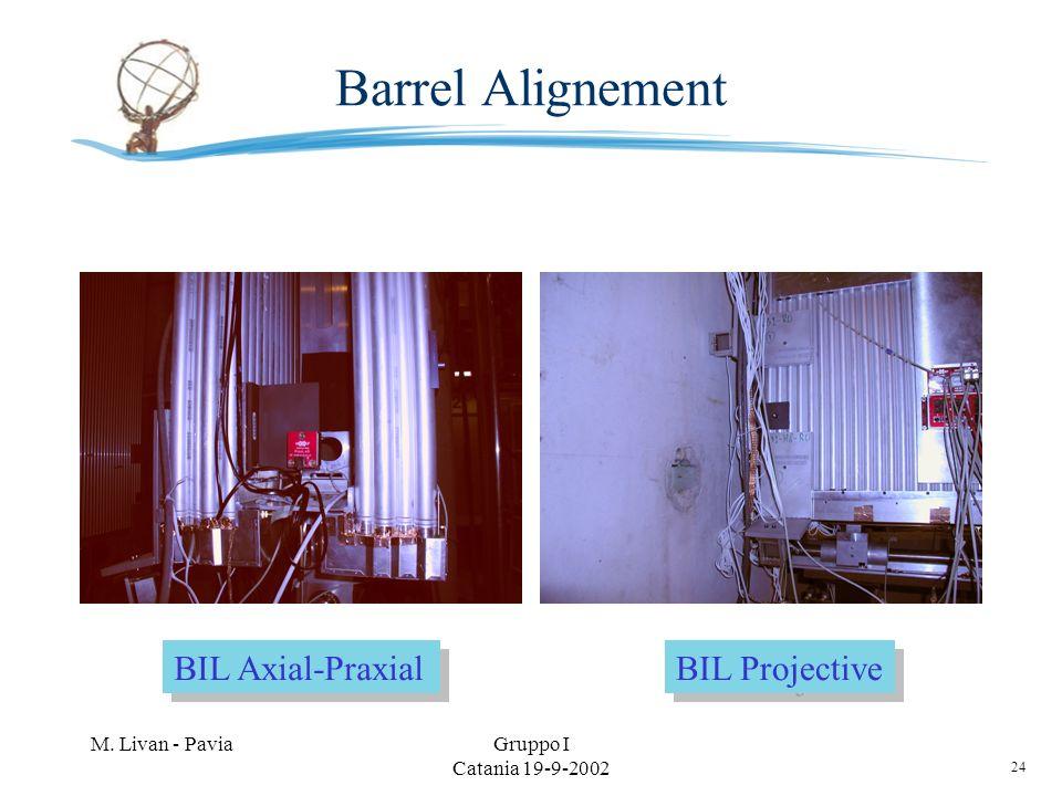 24 M. Livan - PaviaGruppo I Catania 19-9-2002 Barrel Alignement BIL Axial-Praxial BIL Projective