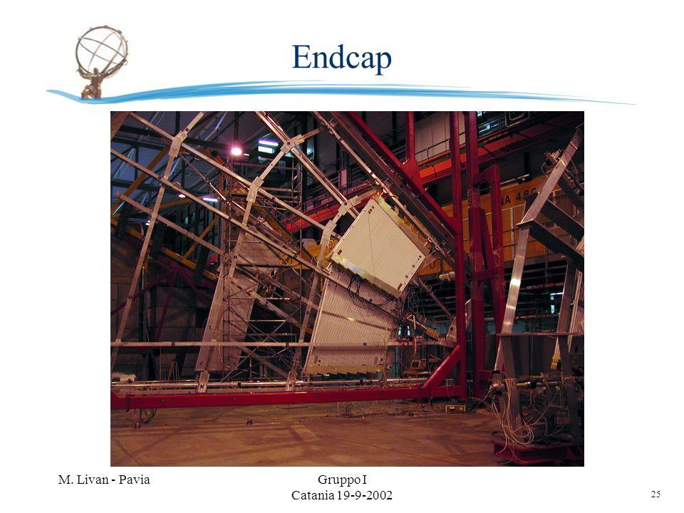 25 M. Livan - PaviaGruppo I Catania 19-9-2002 Endcap