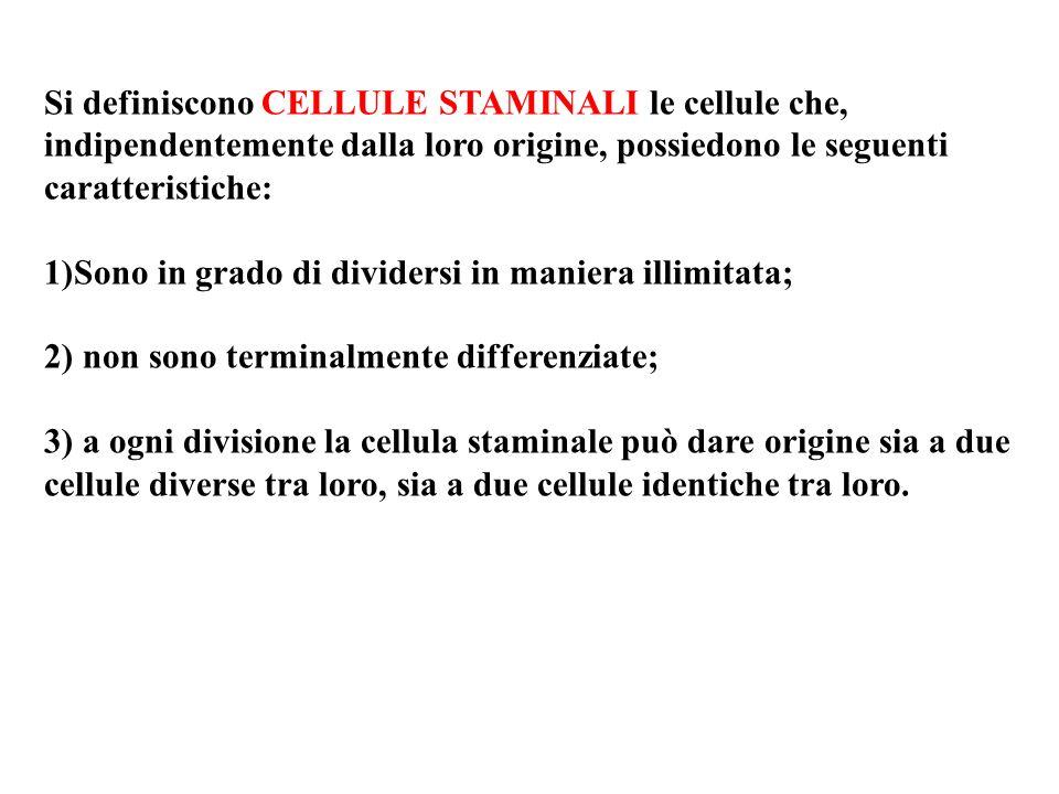 Si definiscono CELLULE STAMINALI le cellule che, indipendentemente dalla loro origine, possiedono le seguenti caratteristiche: 1)Sono in grado di divi