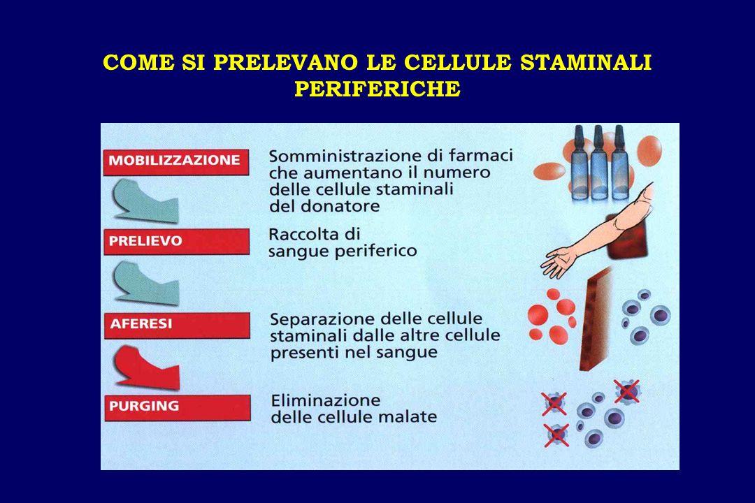 COME SI PRELEVANO LE CELLULE STAMINALI PERIFERICHE
