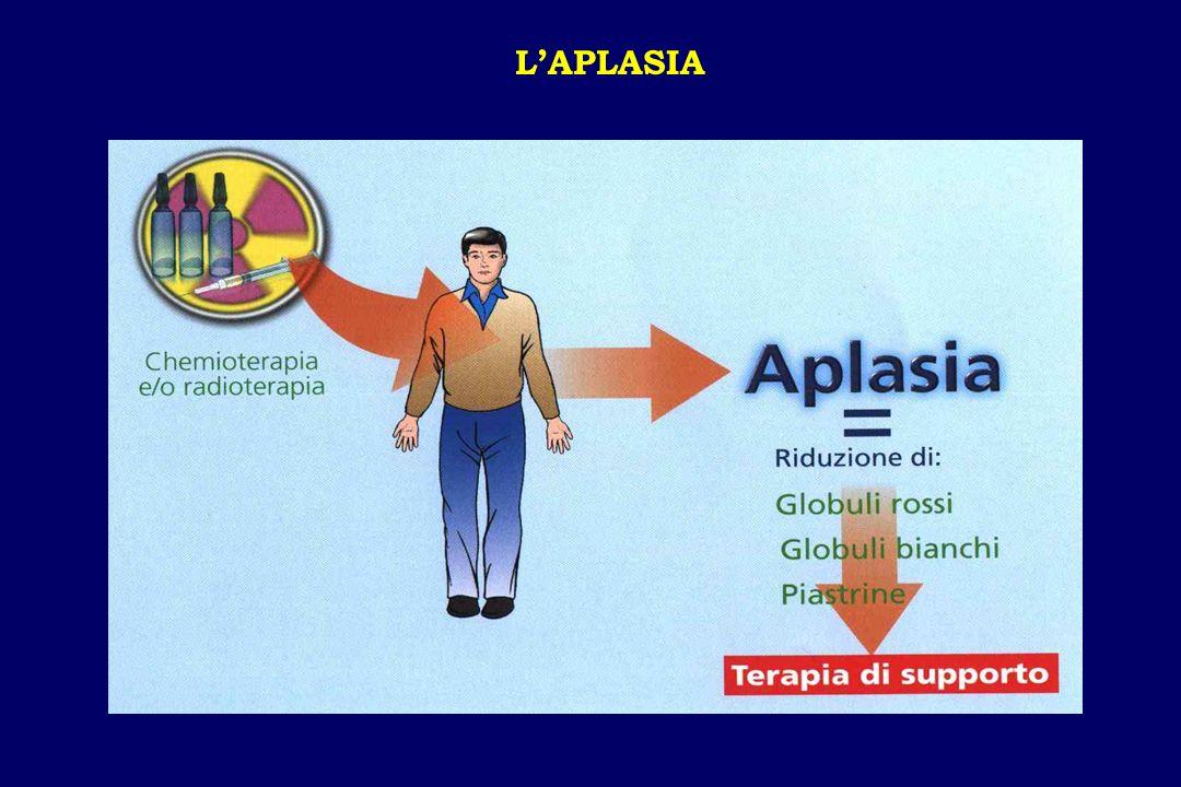 LAPLASIA