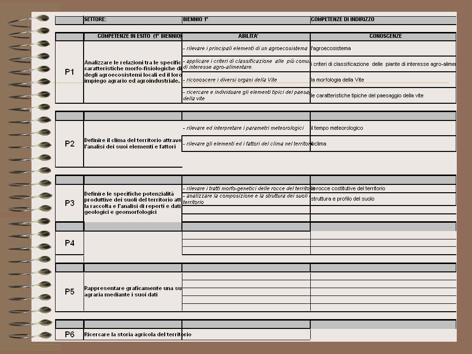 Lavoro di Gruppo COMPETENZE DI INDIRIZZO CONOSCENZE: conoscereABILITA: Saper RAPPRESENTARE I PROCESSI PRINCIPALI DI TRASFORMAZIONE DEI PRODOTTI AGROALIMENTARI ATTINENTI LA CULTURA LOCALE/TIPICA DEL TERRITORIO La storia dellallevamento degli animali Ricercare e sintetizzare il processo di diffusione degli allevamenti Le tradizioni culturali legate allallevamento Individuare le caratteristiche specifiche della cultura pastorale Le caratteristiche tipiche del paesaggio silvo-pastorale Ricercare ed individuare gli elementi tipici del paesaggio silvo-pastorale Il linguaggio del compartoUtilizzare il lessico di base I processi di produzione del latte e della carne e i relativi prodotti Raccogliere e interpretare i dati relativi ai diversi processi e prodotti zootecnici (grafici,tabelle e etichette) Il mondo dei microrganismiUtilizzare il microscopio per losservazione di microrganismi I processi di produzioneOsservare le diverse fasi delle produzioni Raccogliere e catalogare i dati dal campo al prodotto finito Sistemare i dati raccolti secondo modelli empirici La tradizione culturale del prodotto locale Individuare le caratteristiche specifiche della cultura Le caratteristiche tipiche del paesaggio rurale Ricercare, individuare e misurare alcuni elementi caratteristici degli ulivi secolari