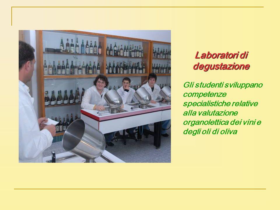 Gli studenti sviluppano competenze specialistiche relative alla valutazione organolettica dei vini e degli oli di oliva Laboratori di degustazione