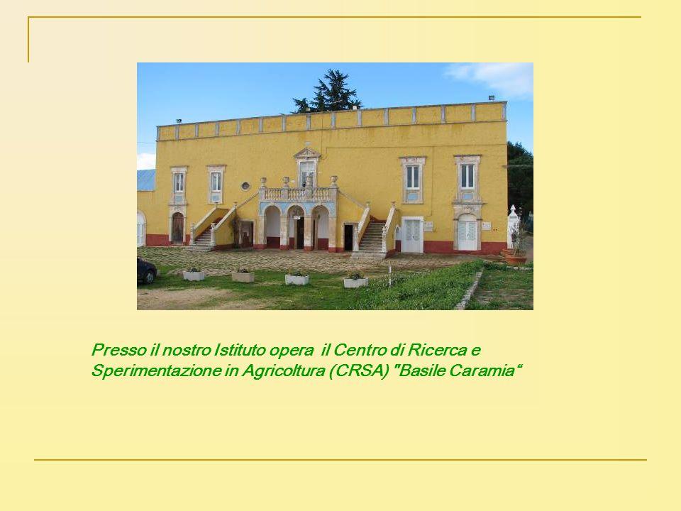 Presso il nostro Istituto opera il Centro di Ricerca e Sperimentazione in Agricoltura (CRSA)