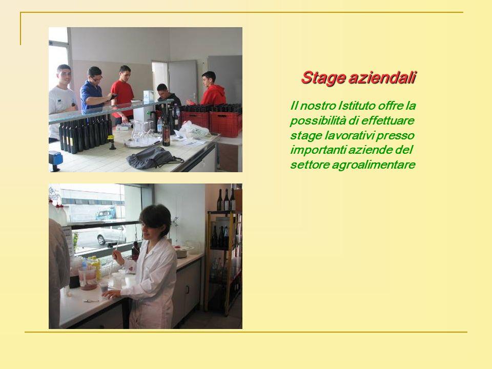 Il nostro Istituto offre la possibilità di effettuare stage lavorativi presso importanti aziende del settore agroalimentare Stage aziendali