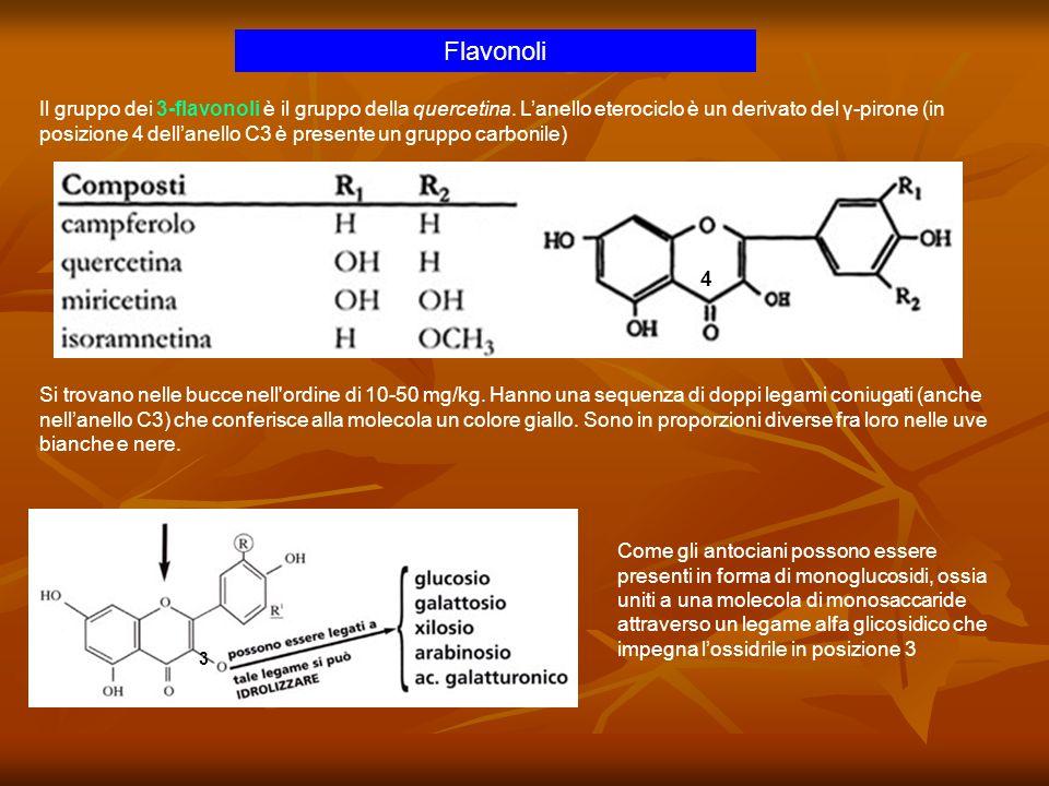 Il gruppo dei 3-flavonoli è il gruppo della quercetina. Lanello eterociclo è un derivato del γ-pirone (in posizione 4 dellanello C3 è presente un grup