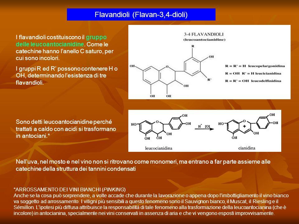 Flavandioli (Flavan-3,4-dioli) I flavandioli costituiscono il gruppo delle leucoantocianidine. Come le catechine hanno lanello C saturo, per cui sono