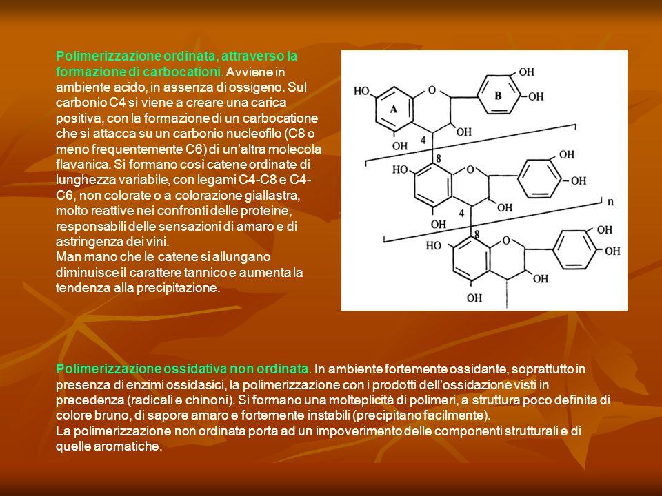 Polimerizzazione ordinata, attraverso la formazione di carbocationi. Avviene in ambiente acido, in assenza di ossigeno. Sul carbonio C4 si viene a cre